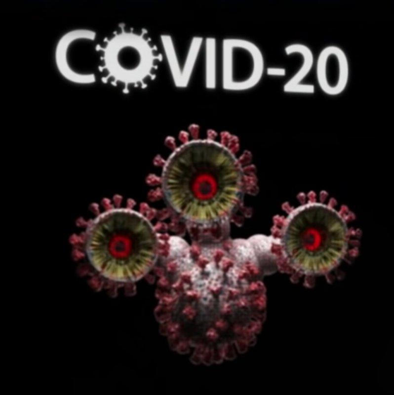 Name:  Covid 20.jpg Views: 19 Size:  45.1 KB